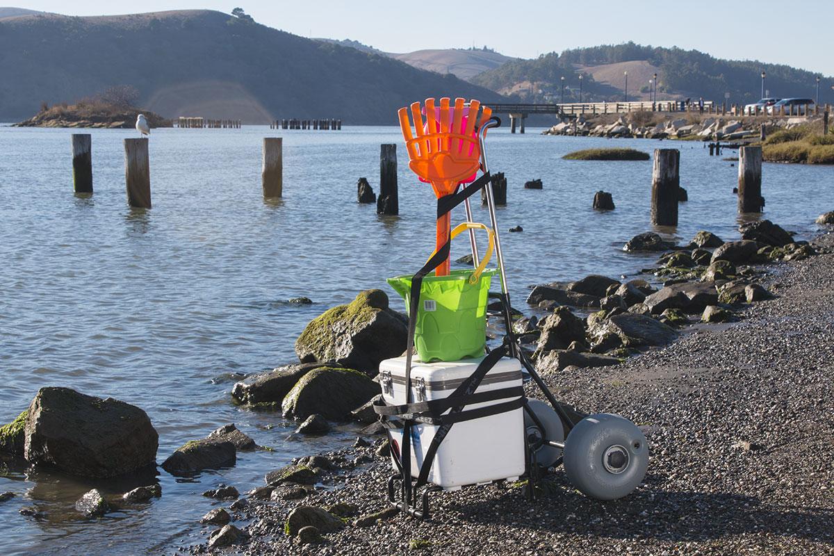 Beach Cart Folding Mini By Wheeleez 174 Beachwheels Australia